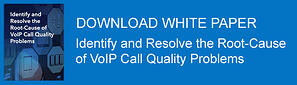 Download PathSolutions VoIP Troubleshooting White Paper