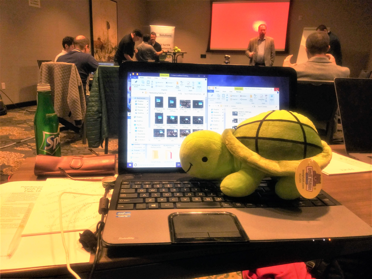 photo-NFD20-hashtag-event-turtle